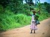 Congo, raccogliere la frutta