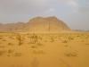 Le truppe cammellate del deserto