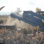 Distrutte 6 tonnellate di avorio in USA <br> WWF: Italia segua l'esempio