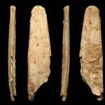 Neanderthal: un'altra scoperta intensifica il mistero della loro scomparsa