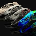 Avatar fossili e paleontologia moderna