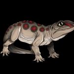 Seymouria, un gigantesco anfibio vissuto nel Permiano