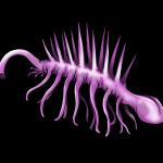 Il verme-rompicapo Hallucigenia