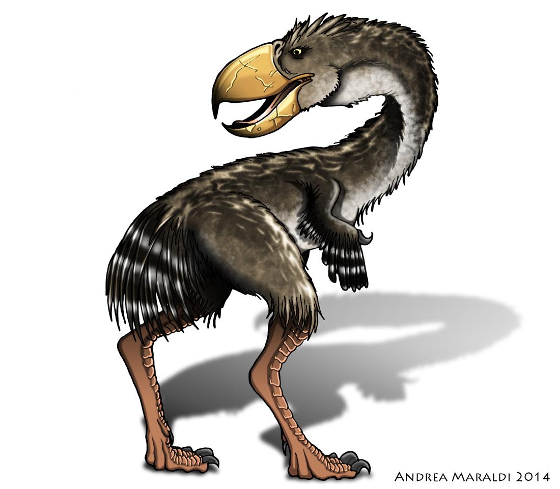 Phorusracos l'uccello del terrore