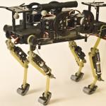 Un robot che corre come un gatto