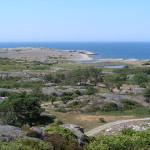L'importanza dell'azione locale per la conservazione