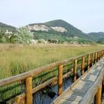 Non solo la Toscana al bivio tra tutela e blocco