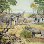 Evoluzione delle ossa dell'orecchio negli antenatidei mammiferi