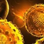 Epatite C: nuove opportunità di cura pubblicate su The Lancet