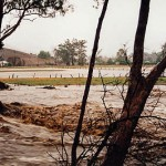 Per l'ambiente non bastano neppure le alluvioni