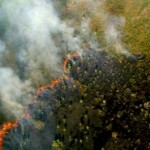 Gli incendi minacciano la salute?