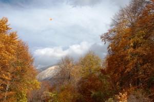 L'Equinozio d'autunno è alle porte