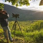 Il sogno di Rewilding Apennines: un Appennino selvaggio e sostenibile