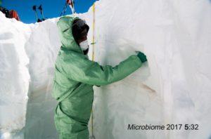 Comunità microbiche sahariane sulle Alpi
