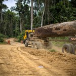 Da oggi fino al 31 dicembre consumeremo risorse in 'deficit ecologico'