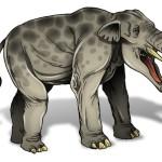 Platibelodonte, un elefante anfibio?
