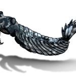 Anomalocaris, un animale antichissimo e dall'aspetto alieno
