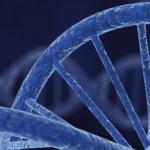 Un nuovo algoritmo identifica le alterazioni del DNA coinvolte nei tumori