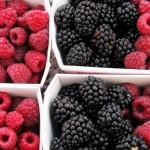 Frutti di bosco e epatite A: aumentano i casi. La nota del Ministero della Salute