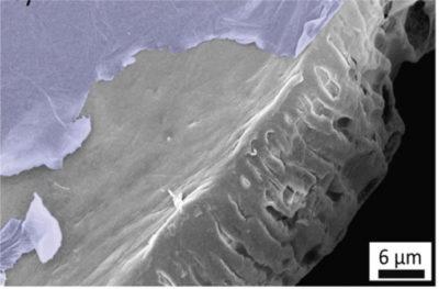 Ingrandimento su scala micrometrica del polisulfone ricoperto da uno strato di ossido di grafene (immagine al microscopio elettronico)