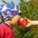 I premi incentivano i bambini a mangiare frutta e verdura