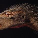 Scoperto nuovo dinosauro africano, abbandonato per 50 anni ad Harvard
