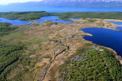 Il sito di Stordalen Mire, nell' Abisko National Park, in Svezia, immediatamente a nord del Circolo Polare Artico, 60° lat. (crediti: Scott Saleska)