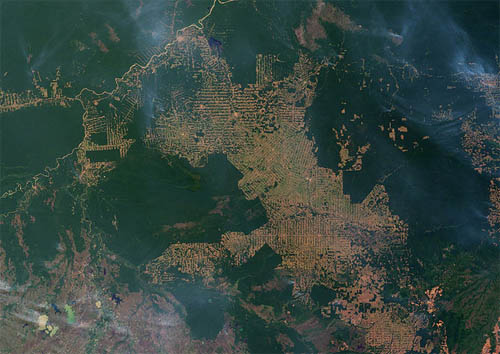 Deforestazione in Amazzonia. Crediti: NASA, foto di Jesse Allen and Robert Simmon