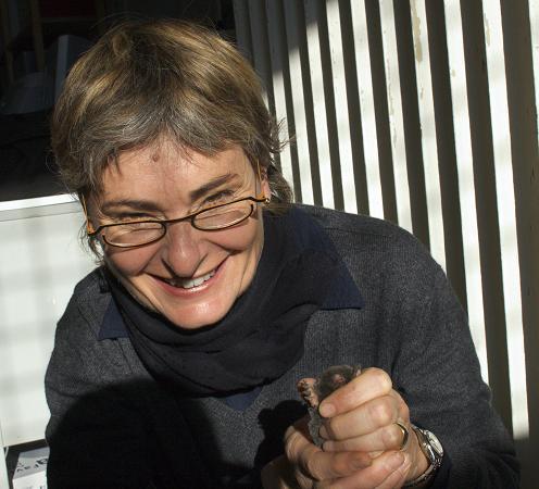La professoressa Anna Loy