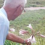 Parchi e giardini aiutano chi soffre di demenza