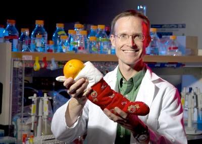 Il nutrizionista Tory Parker ha publicato una ricerca in cui associazioni di antiossidanti nelle stesse proporzioni contenute nelle arance possono portare benefici all'organismo. In futuro possibili applicazioni nella realizzazione di integratori più efficaci. Crediti: Mark Philbrick