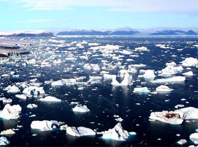 Ghiacci dell'Artico