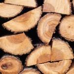 La biomassa è green?