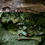 Antica popolazione del Caucaso contribuì alle origini degli europei
