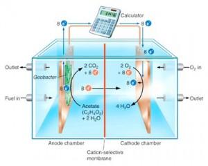 Auto a idrogeno più economiche con nanofili di platino