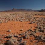 Proposta nuova teoria per i 'Cerchi delle Fate' in Namibia