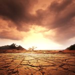 Clima di 94 milioni di anni fa ammonisce su futuri cambiamenti