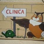 Sicilia: 10 milioni di euro per rimborsi ai deputati,<br>ma si chiudono i centri di recupero fauna selvatica