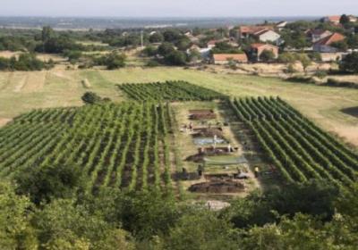 Sito archeologico di Pokrovnik, vicino all'attuale villaggio in Dalmazia - Croazia (crediti: Andrew MT Moore)