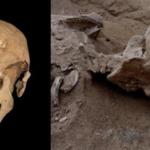 Massacro preistorico sposta indietro nel tempo le origini delle guerre tra umani