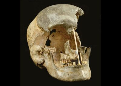 Cranio femminile Sapiens di Zlaty kun - Crediti: Marek Jantac