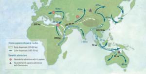 Con i nuovi studi, rivisti i percorsi migratori dei Sapiens 'fuori dall'Africa'