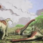 Scoperta nuova specie di titanosauro in Tanzania, il Rukwatitan bisepultus