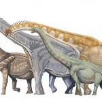 Dinosauri, ecco come si spartivano il cibo i giganti del Giurassico
