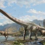 Scoperta in Cina nuova specie di dinosauro 'dal lungo collo'