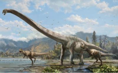 dinosauro-lungo-collo-cina