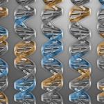 Realizzata cellula con la minore quantità di geni necessari per vivere