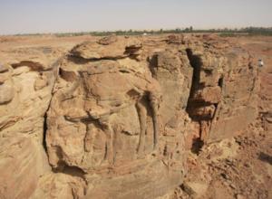 Arte rupestre in Arabia Saudita: dromedari scolpiti a grandezza naturale