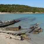 Giornata Mondiale dell'Ambiente, in Italia fra azioni positive e denunce