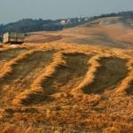 Il piano del paesaggio, le Apuane e il parco